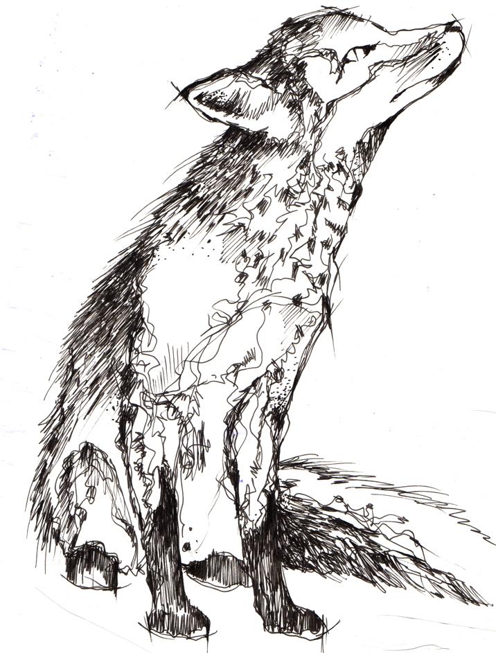 Fuchs_tattoo